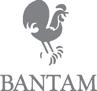 Bantam Doubleday